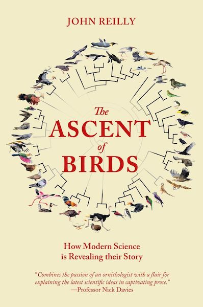 Ascent of Birds cover - a round taxonomic tree of bird-life on a yellow background with the title in red text