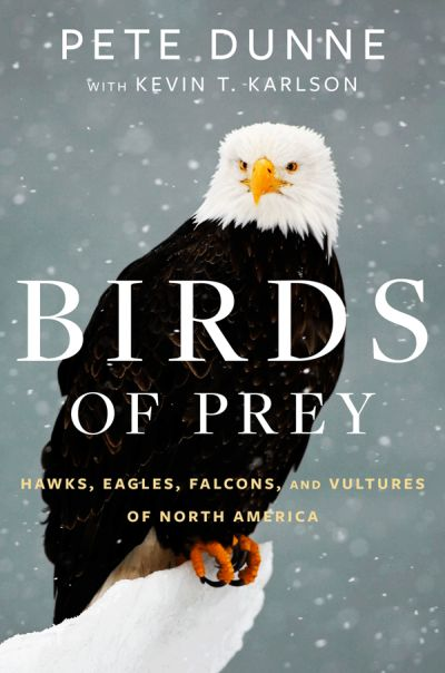 Birds of Prey cover - bald eagle in snow