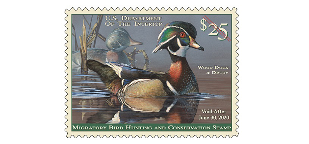 Duck Stamps:  Auto-pilot Conservation in the Era of Trump