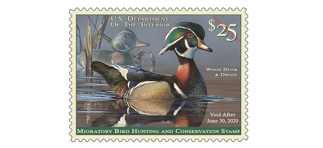 Duck Stamp 2019-2020