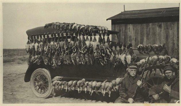 Duck Hunt Kansas