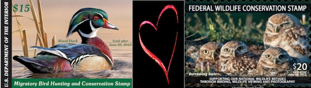 Duck Stamp & Wildlife Conservation Stamp