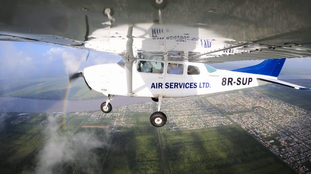 Полеты в Гайану: приключение с птицами