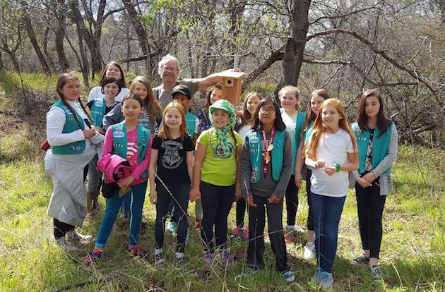 Girl Scout Troop Birdhouses