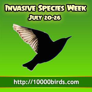 Invasive Species Week