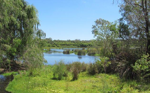 Yanchep National Park-Perth