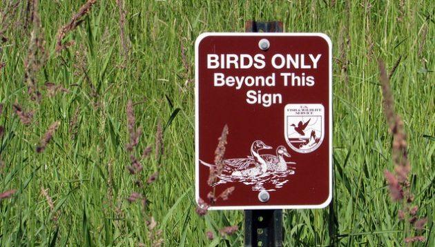 National Wildlife Refuge Sign Birds Only