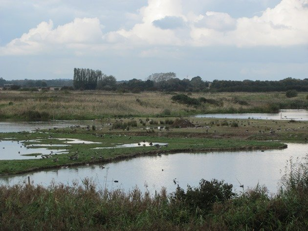 north-cave-wetlands