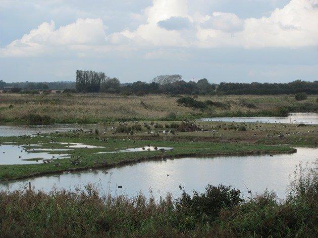 north-cave-wetlands