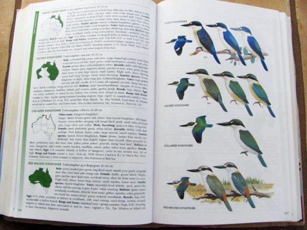 The Australian Bird Guide - Wikipedia