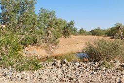 A Pilbara pool