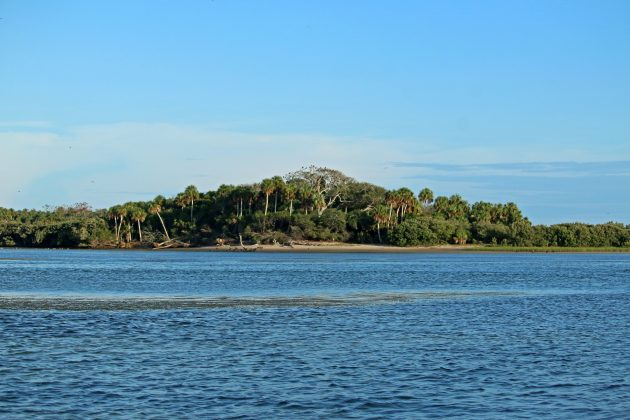 snake key, cedar key, florida, travel