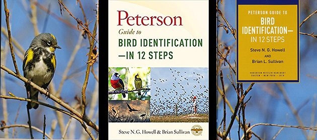 Peterson Guide to Bird Identification—In 12 Steps: A Book Review