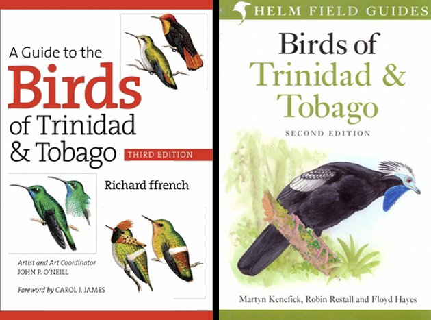 The Birds Of Trinidad And Tobago Two Guides One Book Review