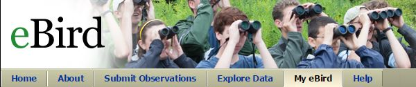 eBird -- How Many Birders?