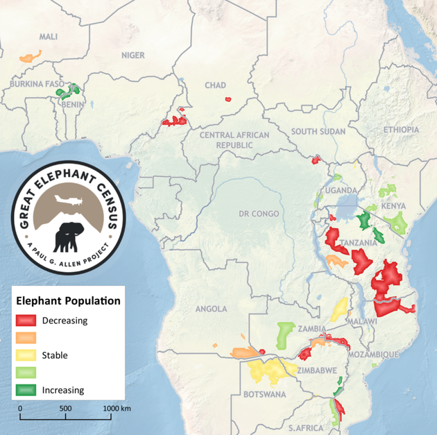 great-elephant-census-copy