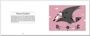 harper.easternkingbird.b.630