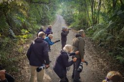 Responsible Birding in Colombia with Jaguarundi Travel
