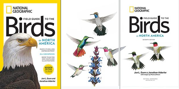 National Geographic Field Guide to the Birds of North America, 7th Edition: A Field Guide Review