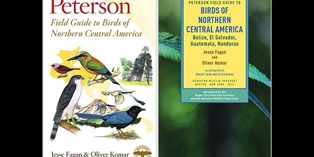 Peterson Field Guide to Birds of Northern Central America: A Book Review