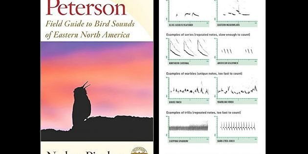 Peterson Field Guide to Bird Sounds of Eastern North America: A Book Review by a Sound Challenged Birder