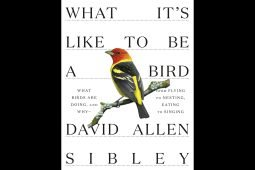 What It's Like to Be a Bird: A Review of the New Sibley Book