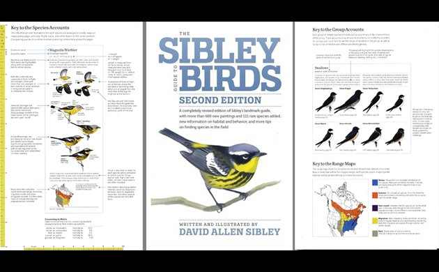 The sibley field guide to birds of western north america: second.