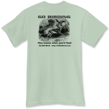 Goshawk shirt - back